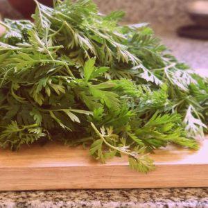 hojas de zanahoria