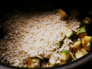 risotto vegetal